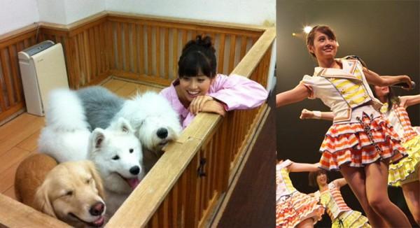 """El jueves 2 de abril Atsuko Maeda (23) ex-AKB48, dijo a la prensa que cuando era niña vió OVNIS desde su departamento, lo anterior fue revelado durante una entrevista realizada en torno a su participación en el aniversario del dorama de Fuji TV """"Yonimokimyōna Monogatari"""" (Historias inusuales)."""