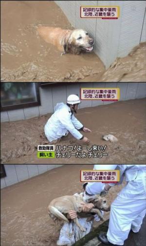inundacion6