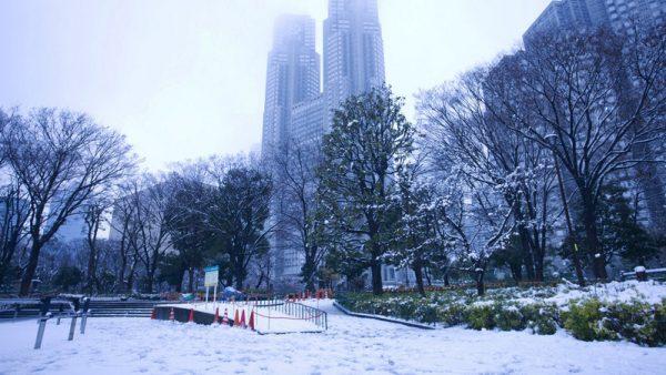 nevada1